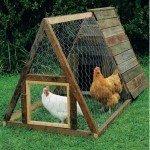 Selber einen Hühnerstall bauen geht schnell mit diesen Techniken