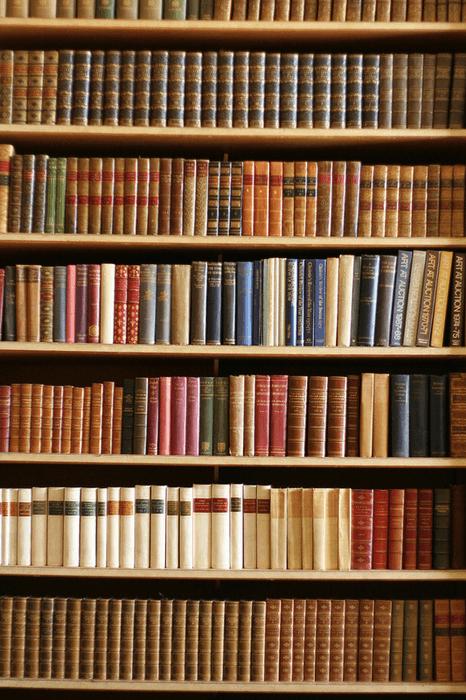 Willst du ein Bücherregal bauen